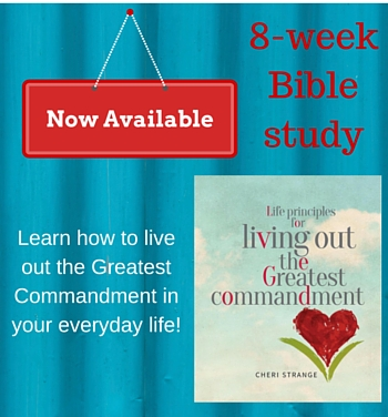 New Bible Study Release