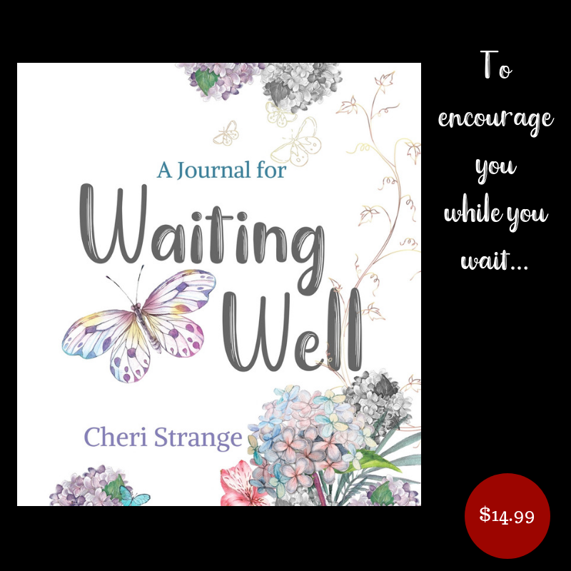 Journal for <br>Waiting Well