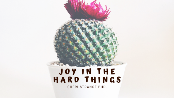 Joy in the Hard Things