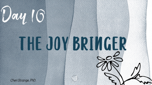 the joy bringer