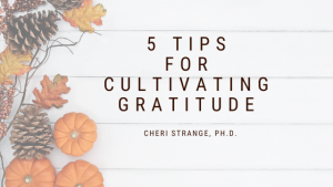 5 tips for cultivating gratitude