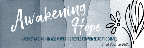 awakening Hope Banner